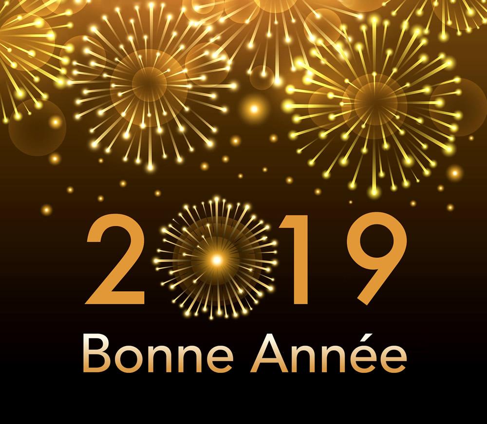 Toute l'équipe d'AD PACK vous souhaite une bonne année 2019